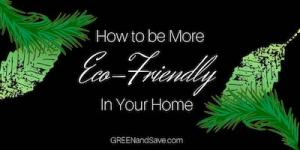 How to Be More Eco-Friendly at Home
