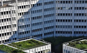 The Benefits of Green Roofs as a Modern Green Building Concept